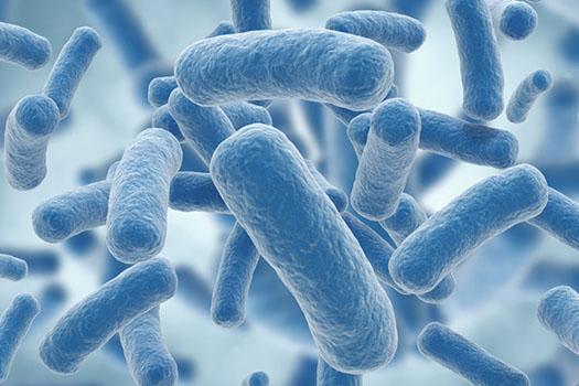 I batteri della bocca sono causa di infarti?