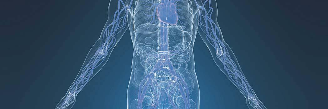 angiologia e chirurgia vascolare a milano